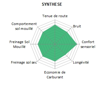 Pneu-GoodYear-EFFIGRIP-2
